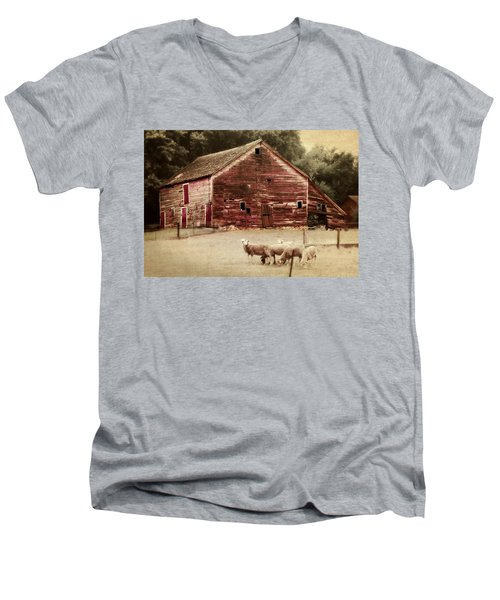 A Grazy Day Men's V-Neck T-Shirt by Julie Hamilton