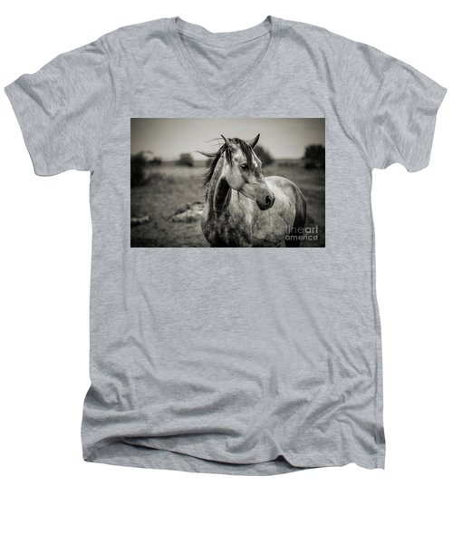 A Horse In Profile In Black And White Men's V-Neck T-Shirt