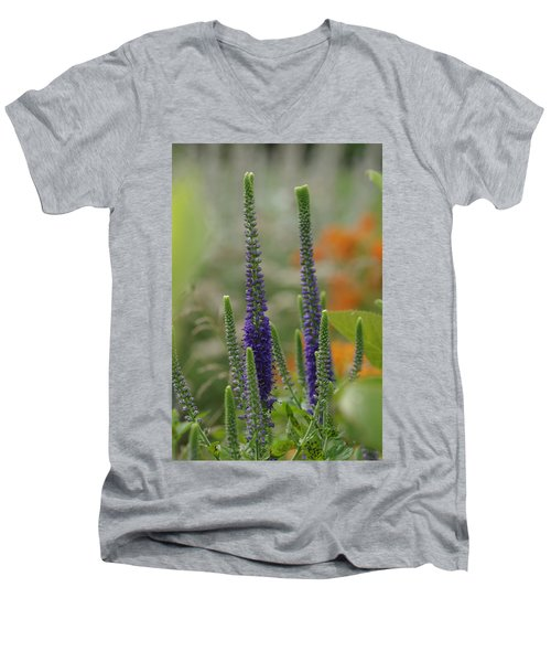 A Lancaster Garden Men's V-Neck T-Shirt