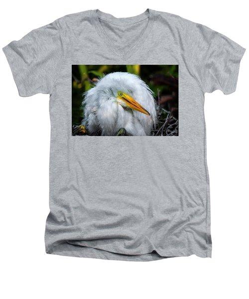 A Little Bit Of Fluff Men's V-Neck T-Shirt by Cyndy Doty