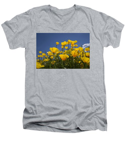 A Little Sunshine  Men's V-Neck T-Shirt by Lucinda Walter