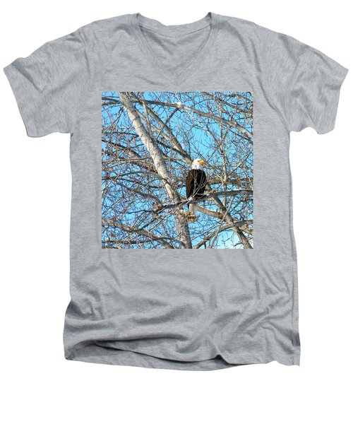 Men's V-Neck T-Shirt featuring the photograph A Majestic Bald Eagle by Will Borden