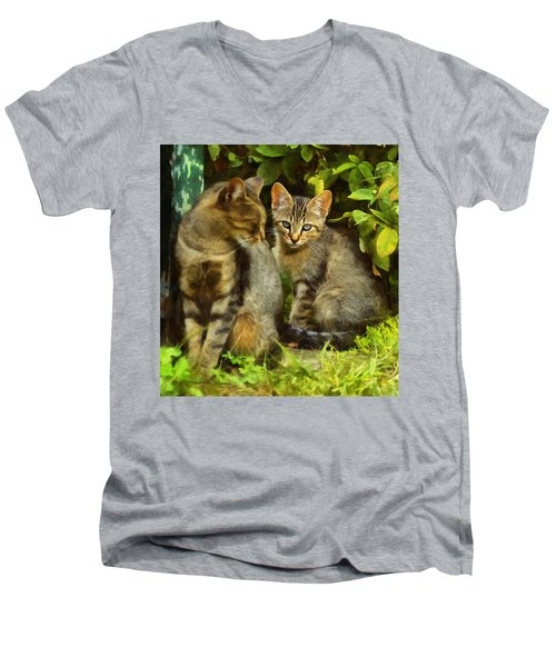 A Pair Of Feral Cats Men's V-Neck T-Shirt