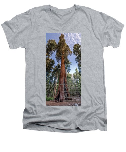 Men's V-Neck T-Shirt featuring the photograph A Poem Lovely As A Tree.   by Phil Abrams