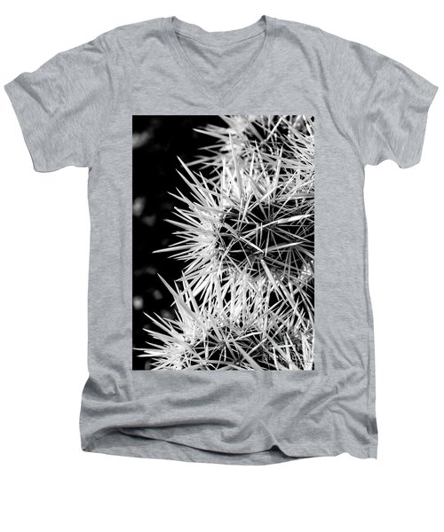A Prickly Subject Men's V-Neck T-Shirt