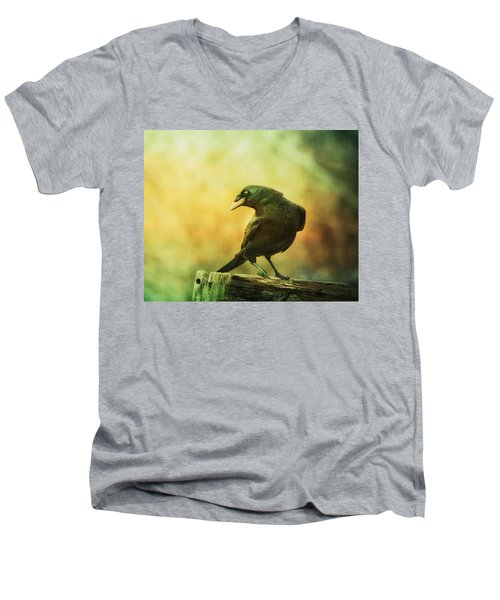 A Ravens Poise Men's V-Neck T-Shirt
