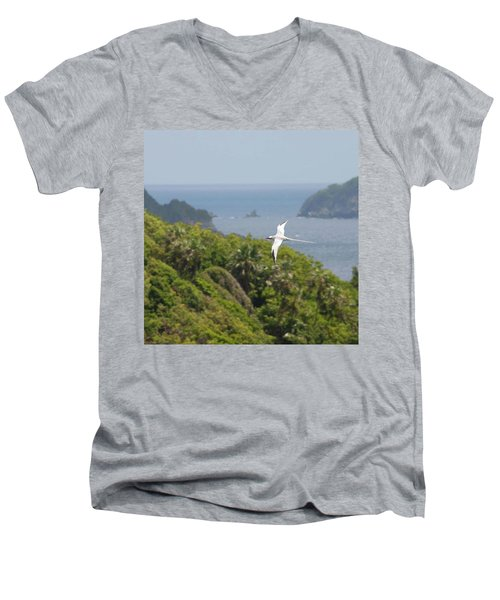 A Red-billed Tropicbird (phaethon Men's V-Neck T-Shirt