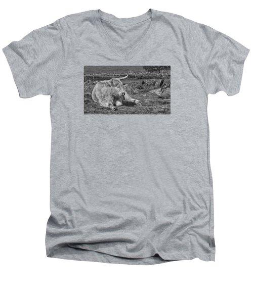 A Resting Highlander Men's V-Neck T-Shirt by Linsey Williams