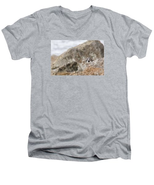 A Ruddy Turnstone Perched On The Rocks Men's V-Neck T-Shirt