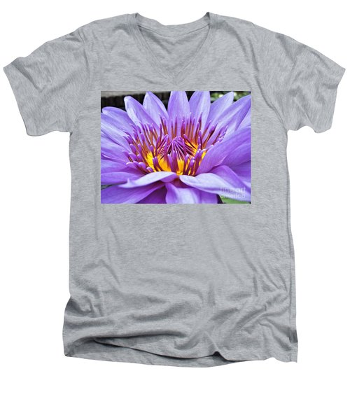 A Sliken Purple Water Lily Men's V-Neck T-Shirt