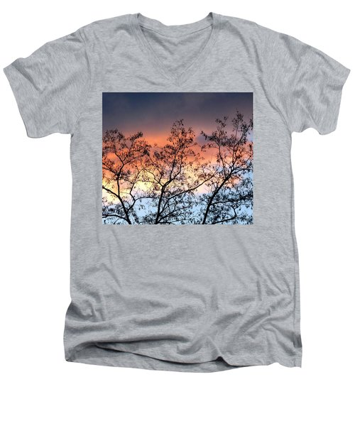 Men's V-Neck T-Shirt featuring the photograph A Splendid Silhouette by Will Borden