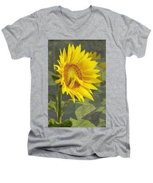 A Sunflower's Prayer Men's V-Neck T-Shirt