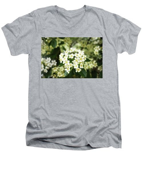 A Thousand Blossoms 3x2 Men's V-Neck T-Shirt