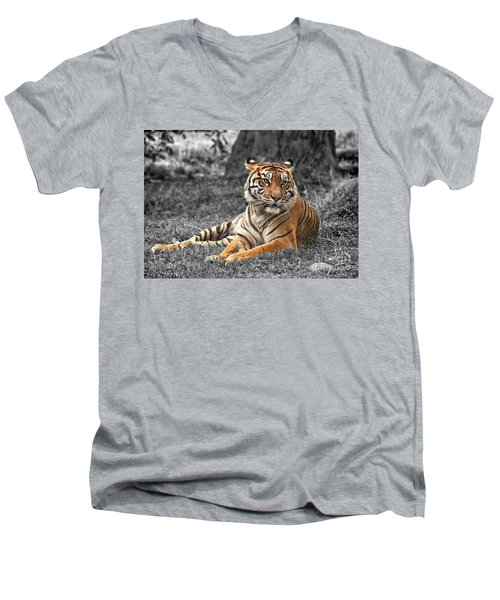 A Tiger Relaxing On A Cool Afternoon II Men's V-Neck T-Shirt