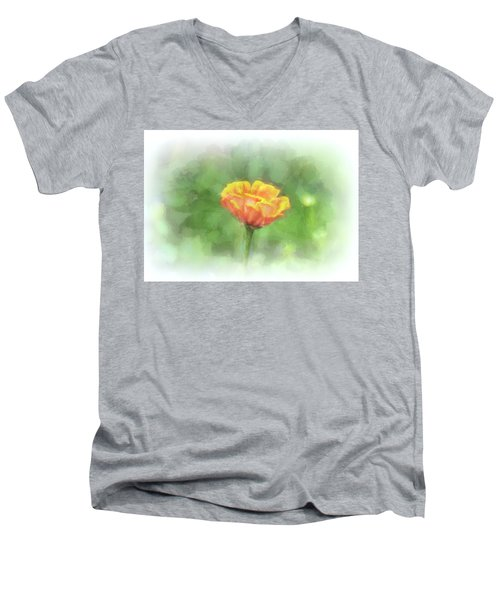 A Touch Of Spring Men's V-Neck T-Shirt