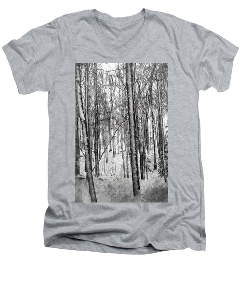 A Tree's View In Winter Men's V-Neck T-Shirt