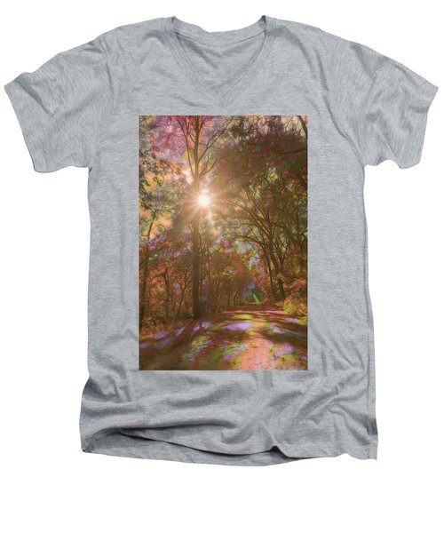 A Walk Through The Rainbow Forest Men's V-Neck T-Shirt