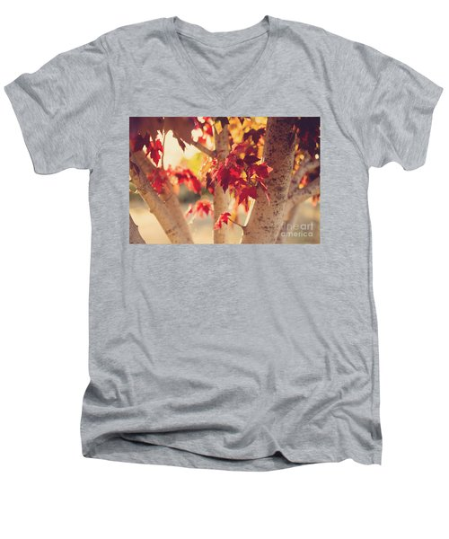 Men's V-Neck T-Shirt featuring the photograph A Warm Red Autumn by Linda Lees