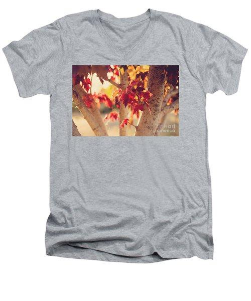 A Warm Red Autumn Men's V-Neck T-Shirt