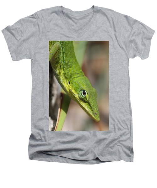 A Watchful Eye Men's V-Neck T-Shirt