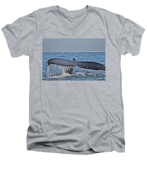 A Whale Of A Tale Men's V-Neck T-Shirt