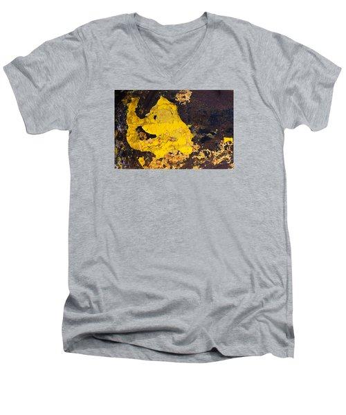 ab4 Men's V-Neck T-Shirt by Catherine Lau