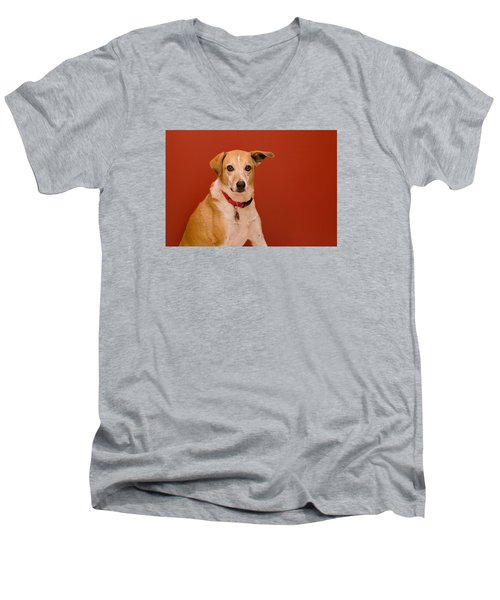 Abbie 1 Men's V-Neck T-Shirt