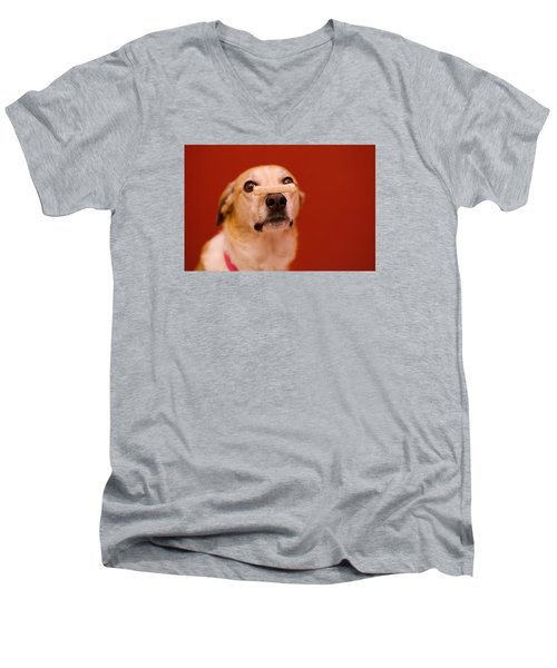 Abbie And A Milky Bone Men's V-Neck T-Shirt