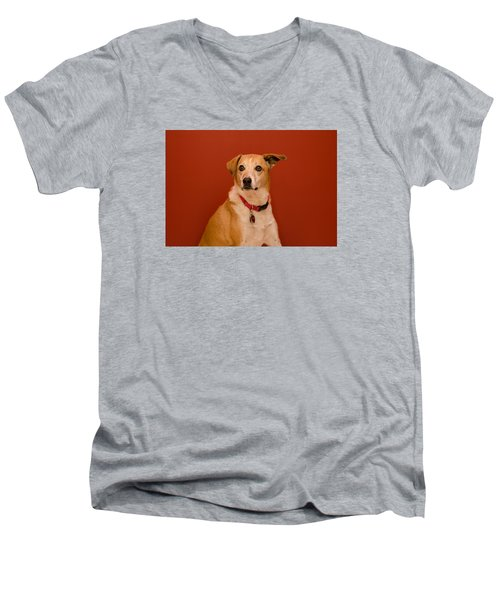 Abbie Men's V-Neck T-Shirt