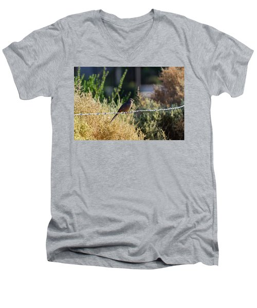 Abert's Towhee Men's V-Neck T-Shirt