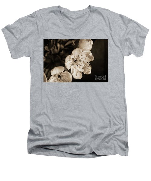 Men's V-Neck T-Shirt featuring the photograph Abiding Elegance by Linda Lees