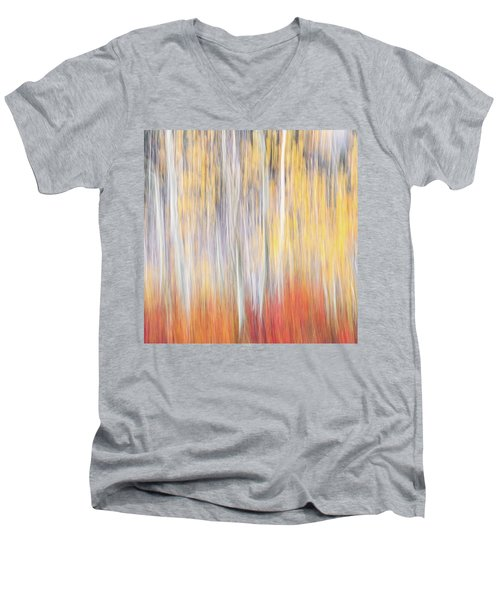 Abstract Autumn Men's V-Neck T-Shirt