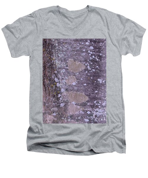 Abstract Photo 001 A Men's V-Neck T-Shirt