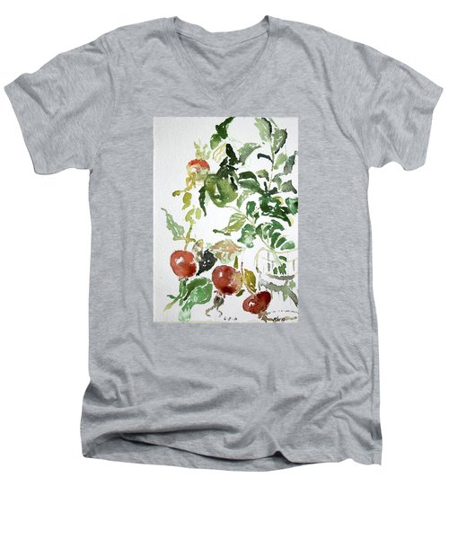 Abstract Vegetables Men's V-Neck T-Shirt