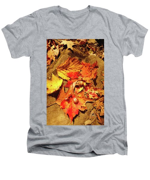 Men's V-Neck T-Shirt featuring the photograph Acorns Fall Maple Leaf by Meta Gatschenberger