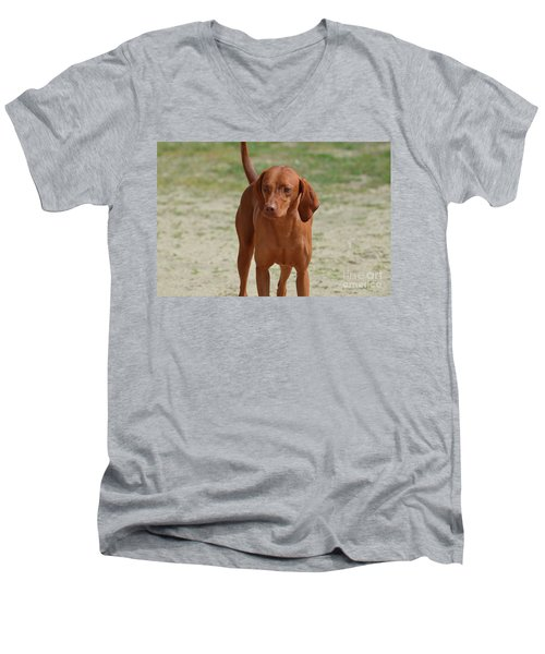 Adorable Redbone Coonhound Standing Alone Men's V-Neck T-Shirt by DejaVu Designs