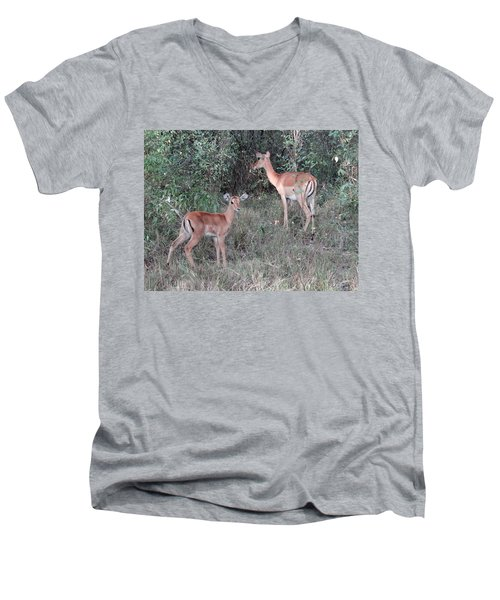 Africa - Animals In The Wild 2 Men's V-Neck T-Shirt by Exploramum Exploramum