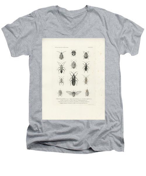 African Bugs And Insects Men's V-Neck T-Shirt