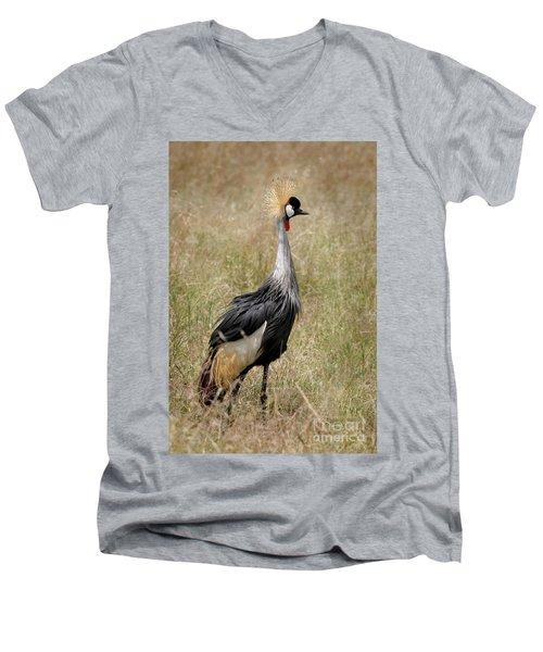 African Grey Crowned Crane Men's V-Neck T-Shirt
