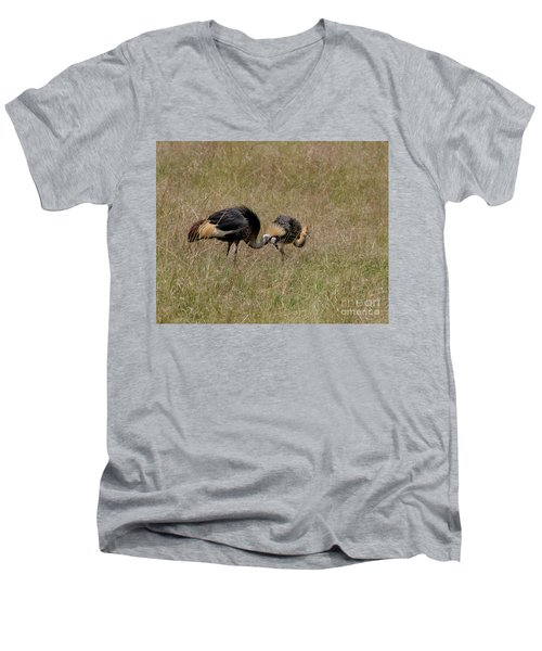 African Grey Crowned  Crane With Chick Men's V-Neck T-Shirt