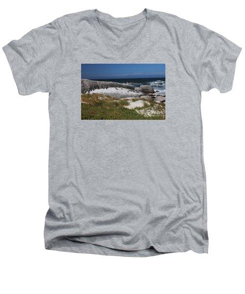 African Penguins Men's V-Neck T-Shirt