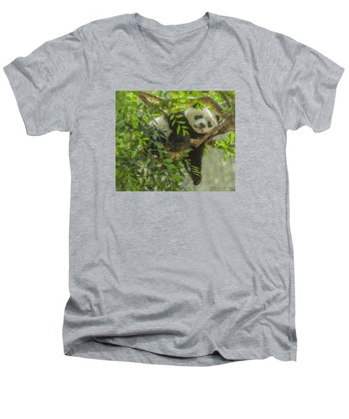 Afternoon Nap Baby Panda Men's V-Neck T-Shirt