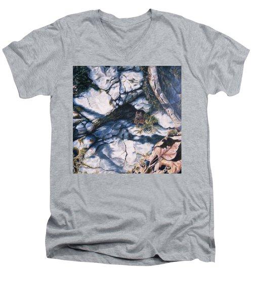 Afternoon Snack Men's V-Neck T-Shirt