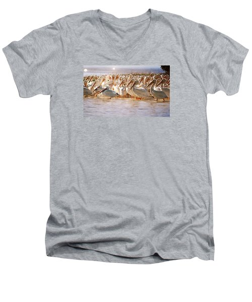Aglow White Pelicans Men's V-Neck T-Shirt