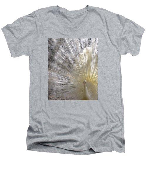 A Leucistic Peacock Men's V-Neck T-Shirt