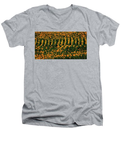 Men's V-Neck T-Shirt featuring the photograph All In A Row by Chris Berry