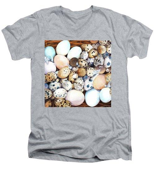 All My Eggs In One Basket Birds Egg Print Men's V-Neck T-Shirt