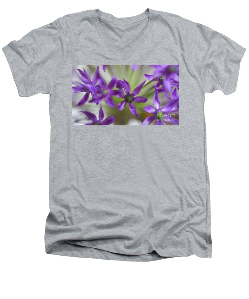 Allium Aflatunense Men's V-Neck T-Shirt