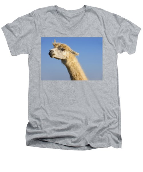 Men's V-Neck T-Shirt featuring the photograph Alpaca by Skip Hunt