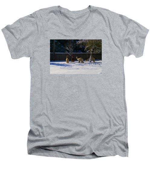 Alpacas In The Snow Men's V-Neck T-Shirt